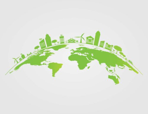 Confused about the Eco-Friendly Terminology and Jargon?