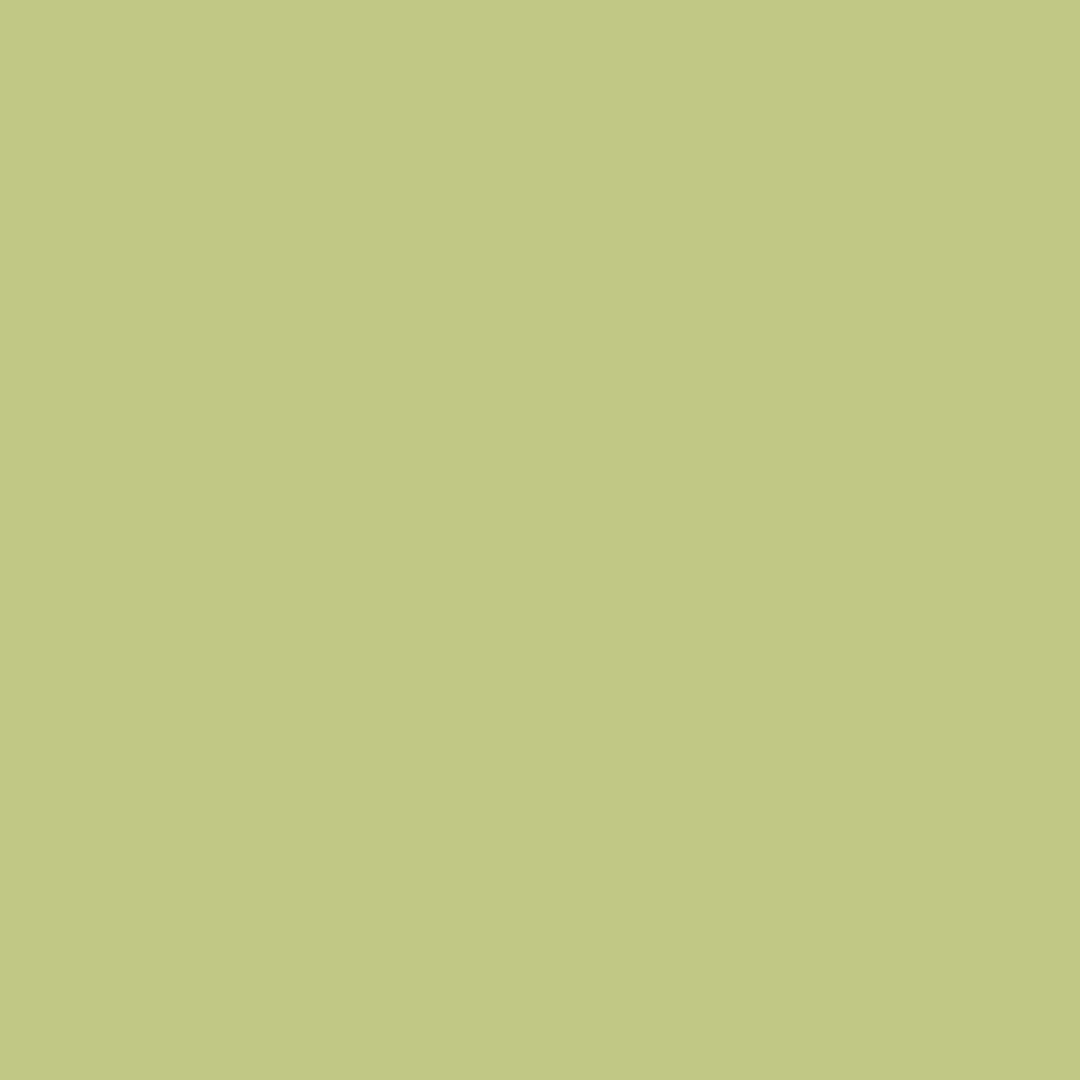 Artichoke - Natural Wall Paint Colour - The Organic and Natural Paint Company