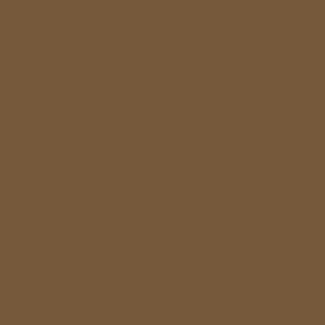 Burnt Umber - Natural Wall Paint Colour - The Organic and Natural Paint Company