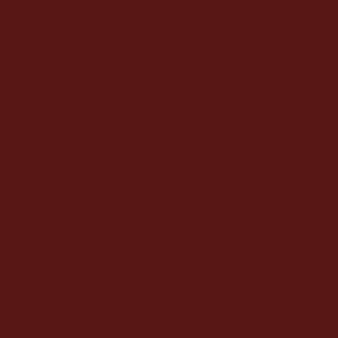 Carnelian - Natural Wall Paint Colour - The Organic and Natural Paint Company