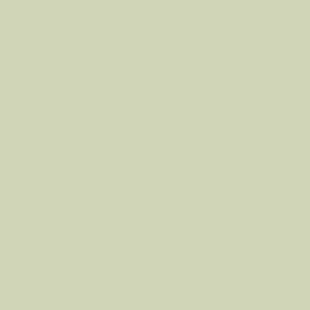 Chateaux - Natural Wall Paint Colour - The Organic and Natural Paint Company