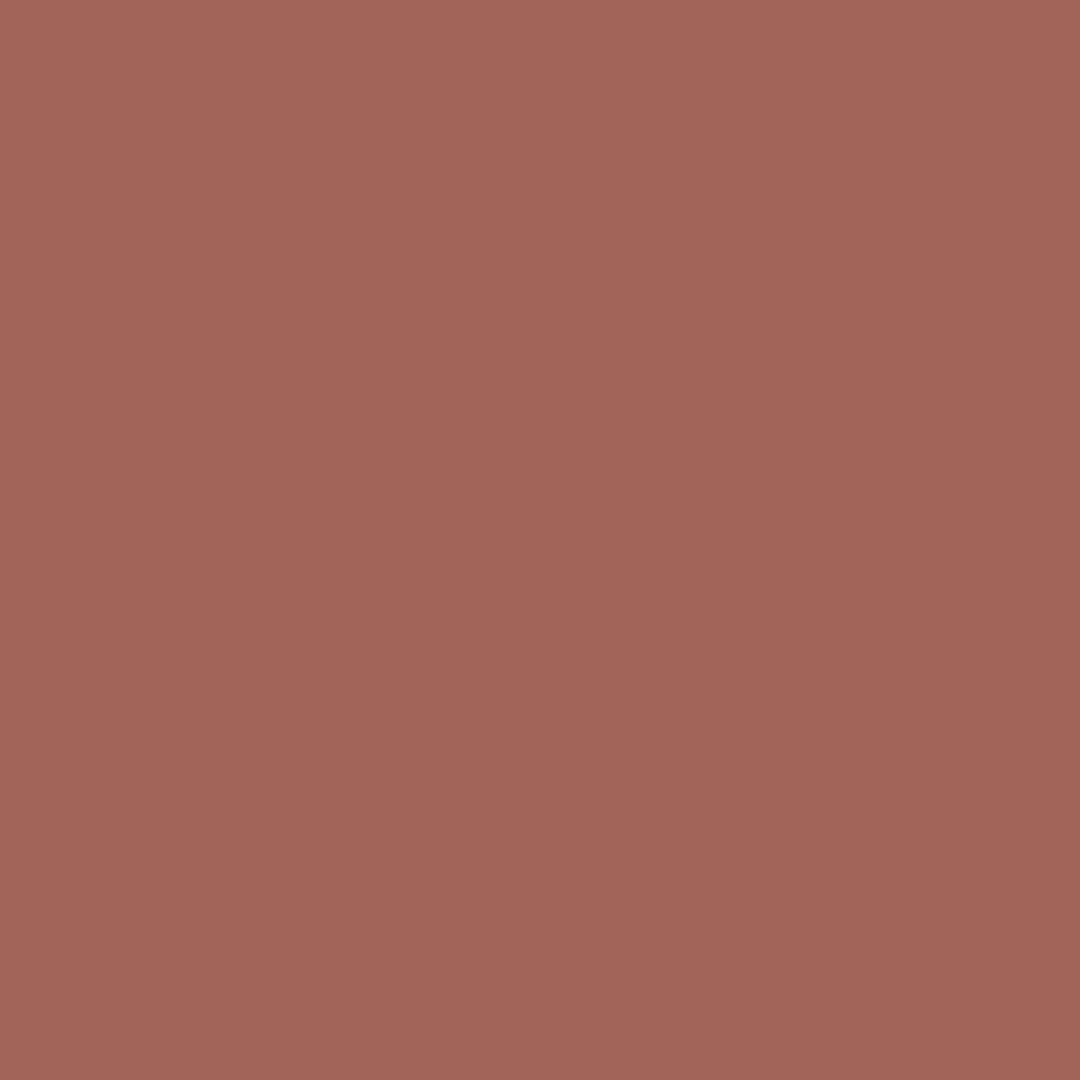 Cinnamon - Natural Wall Paint Colour - The Organic and Natural Paint Company
