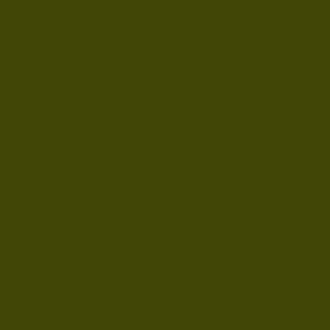 Kombu - Natural Wall Paint Colour - The Organic and Natural Paint Company