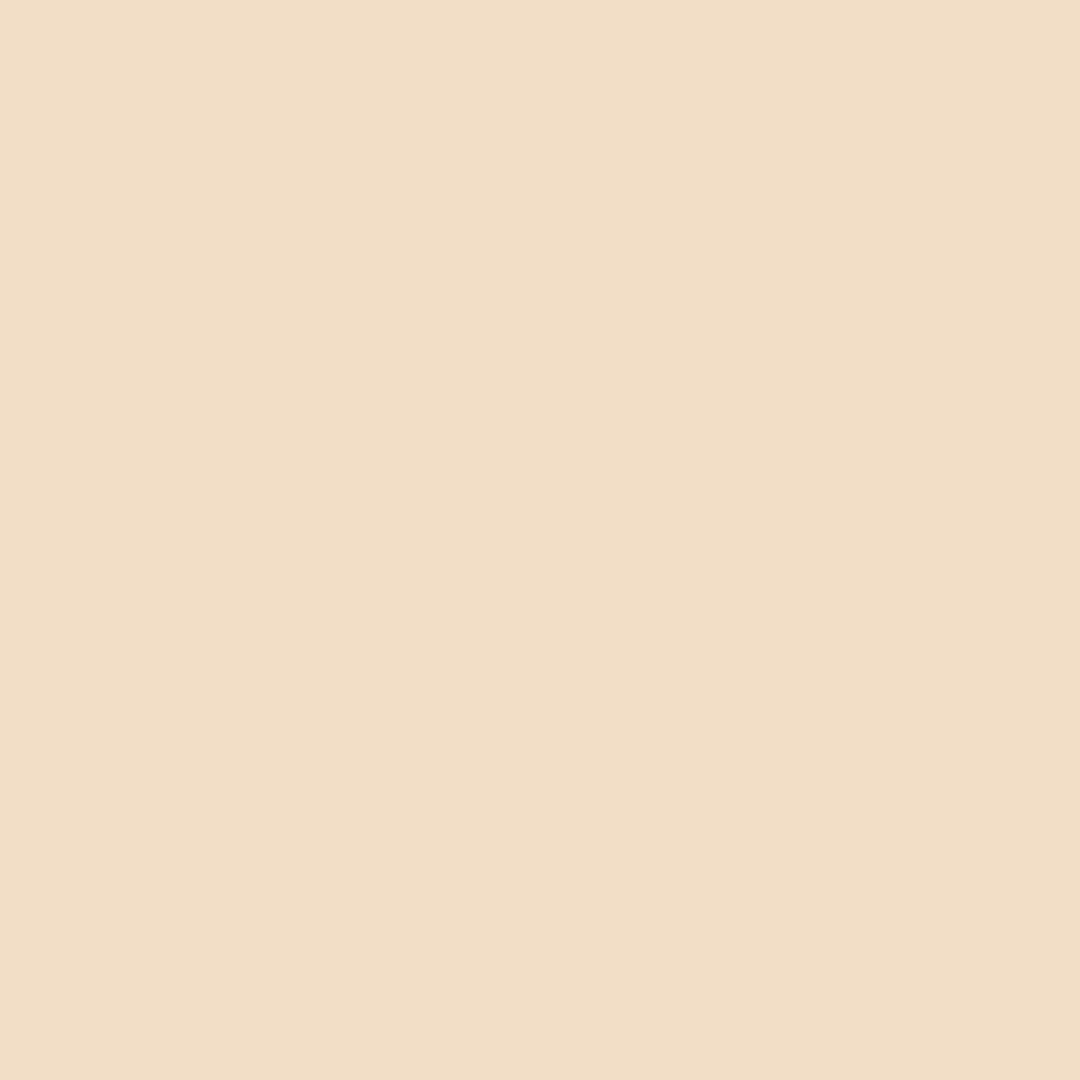 Latte - Natural Wall Paint Colour - The Organic and Natural Paint Company