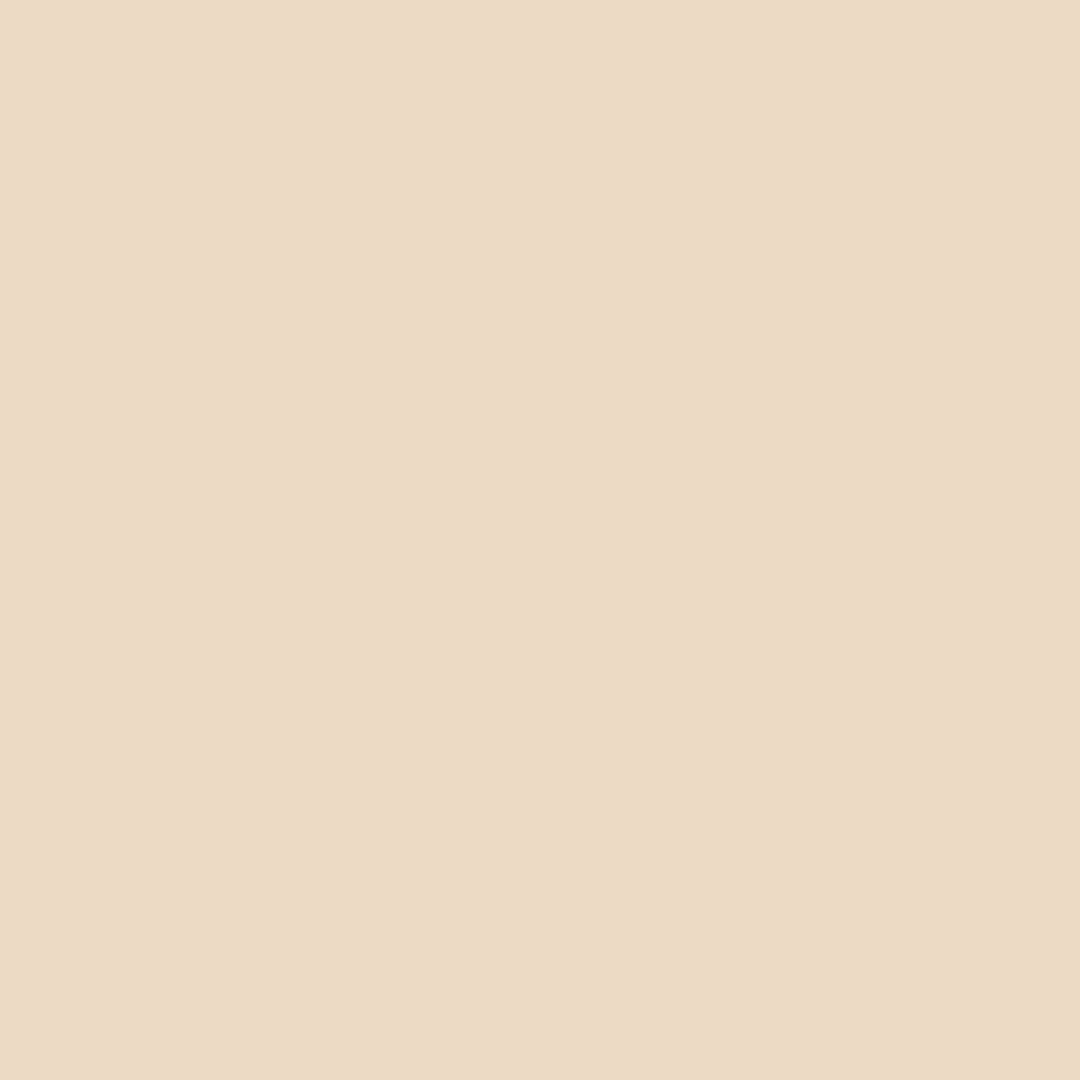 Linwood - Natural Wall Paint Colour - The Organic and Natural Paint Company