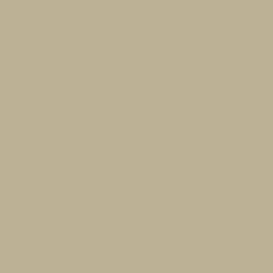 Lovat - Natural Wall Paint Colour - The Organic and Natural Paint Company