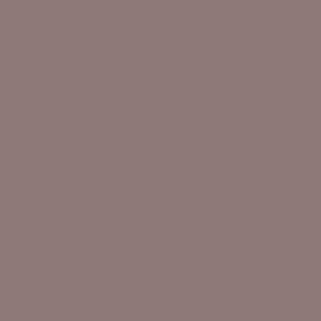 Moleskin Natural Wall Paint Colour - The Organic and Natural Paint Company