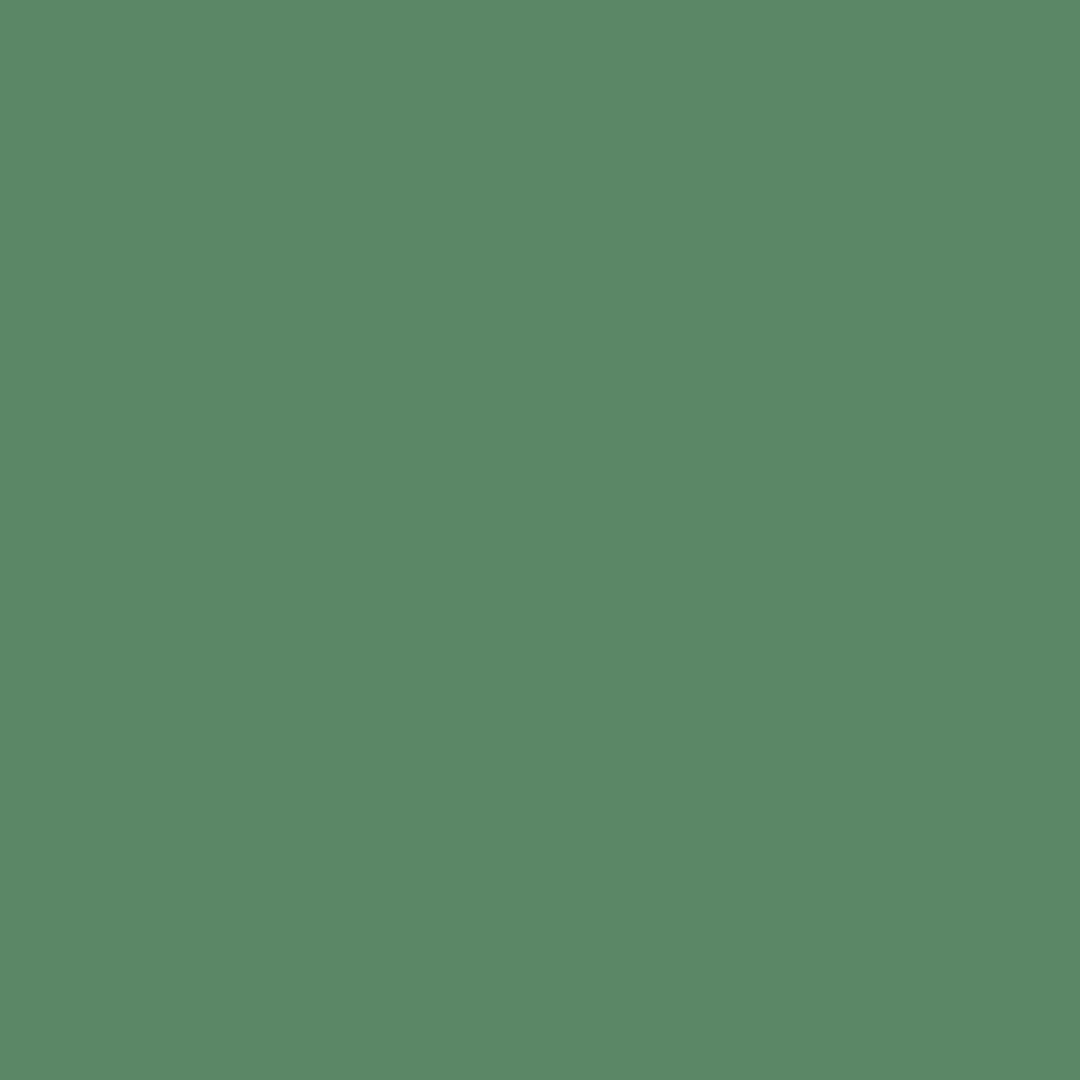 Nakajima - Natural Wall Paint Colour - The Organic and Natural Paint Company
