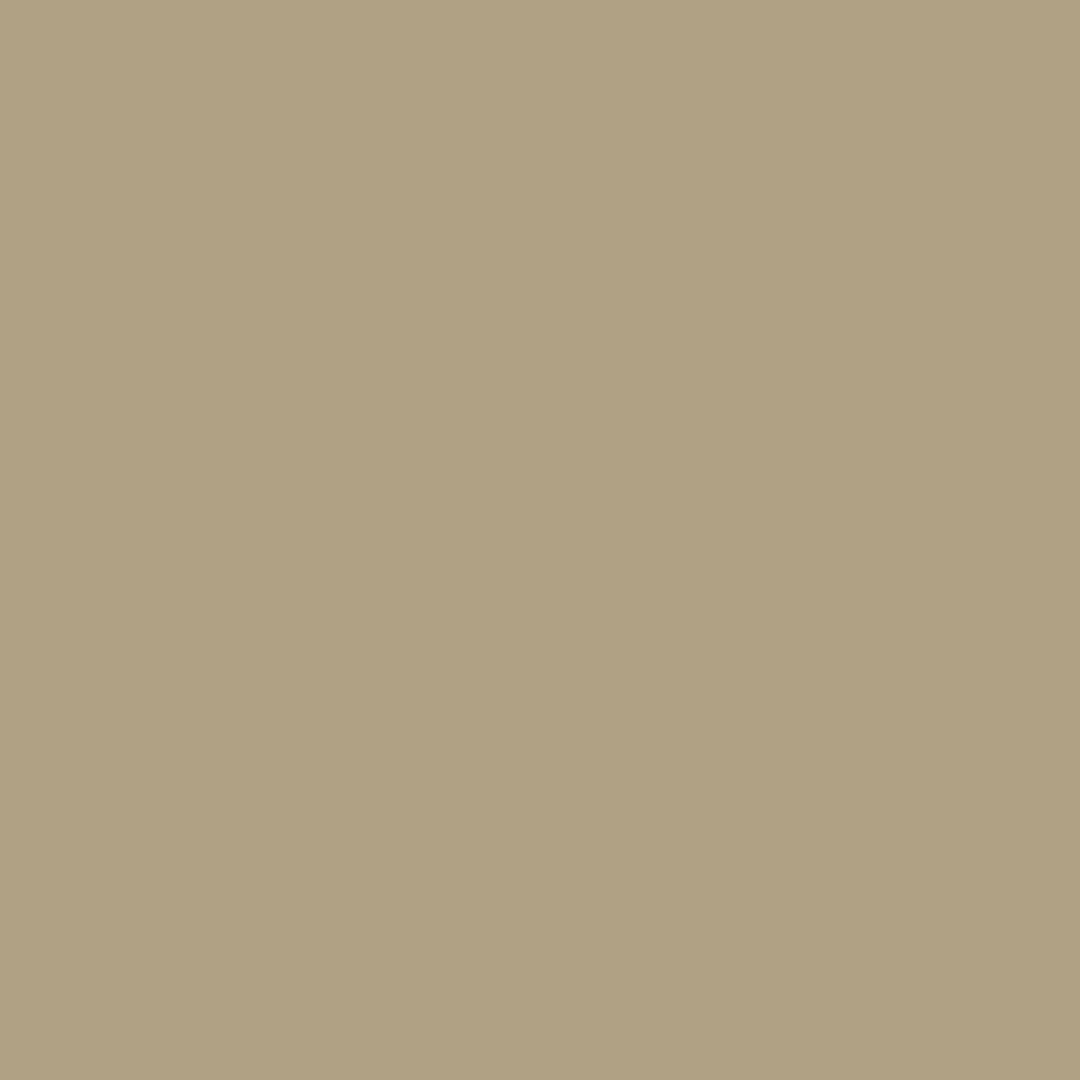 Old Bone - Natural Wall Paint Colour - The Organic and Natural Paint Company