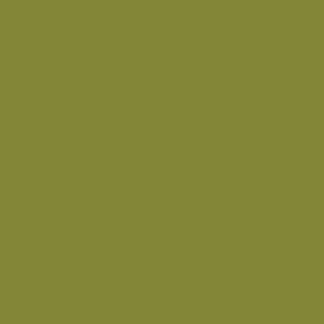 Olive - Natural Wall Paint Colour - The Organic and Natural Paint Company