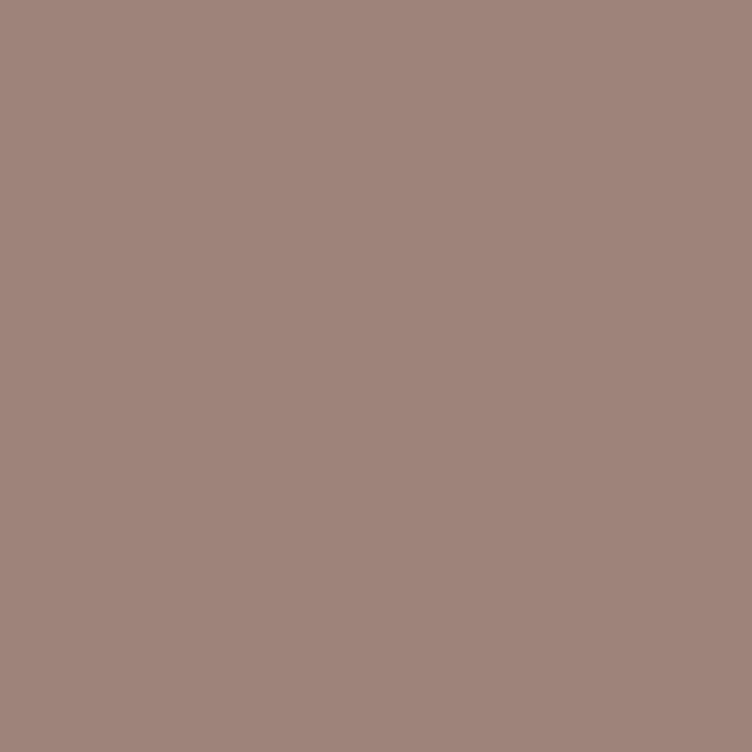 Otter - Natural Wall Paint Colour - The Organic and Natural Paint Company