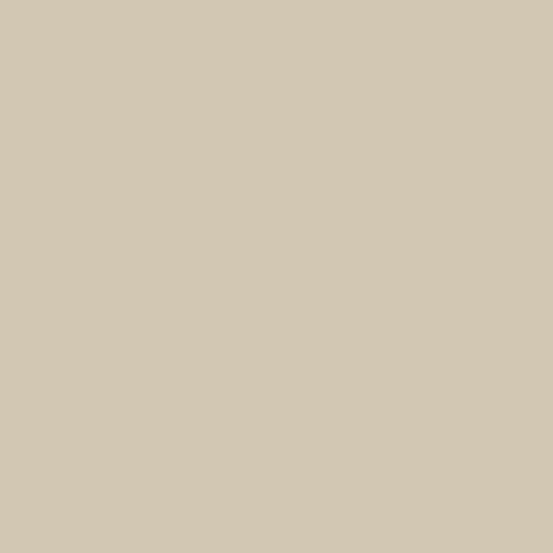 Pale Walnut - Natural Wall Paint Colour - The Organic and Natural Paint Company