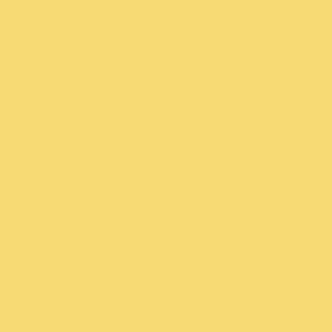 Parmesan - Natural Wall Paint Colour - The Organic and Natural Paint Company