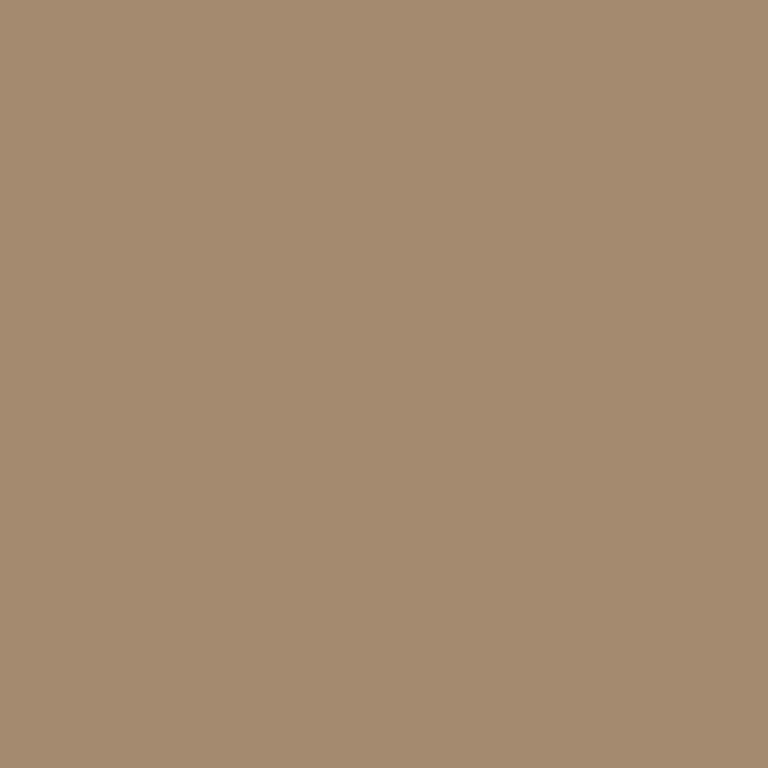 Saddleback - Natural Wall Paint Colour - The Organic and Natural Paint Company