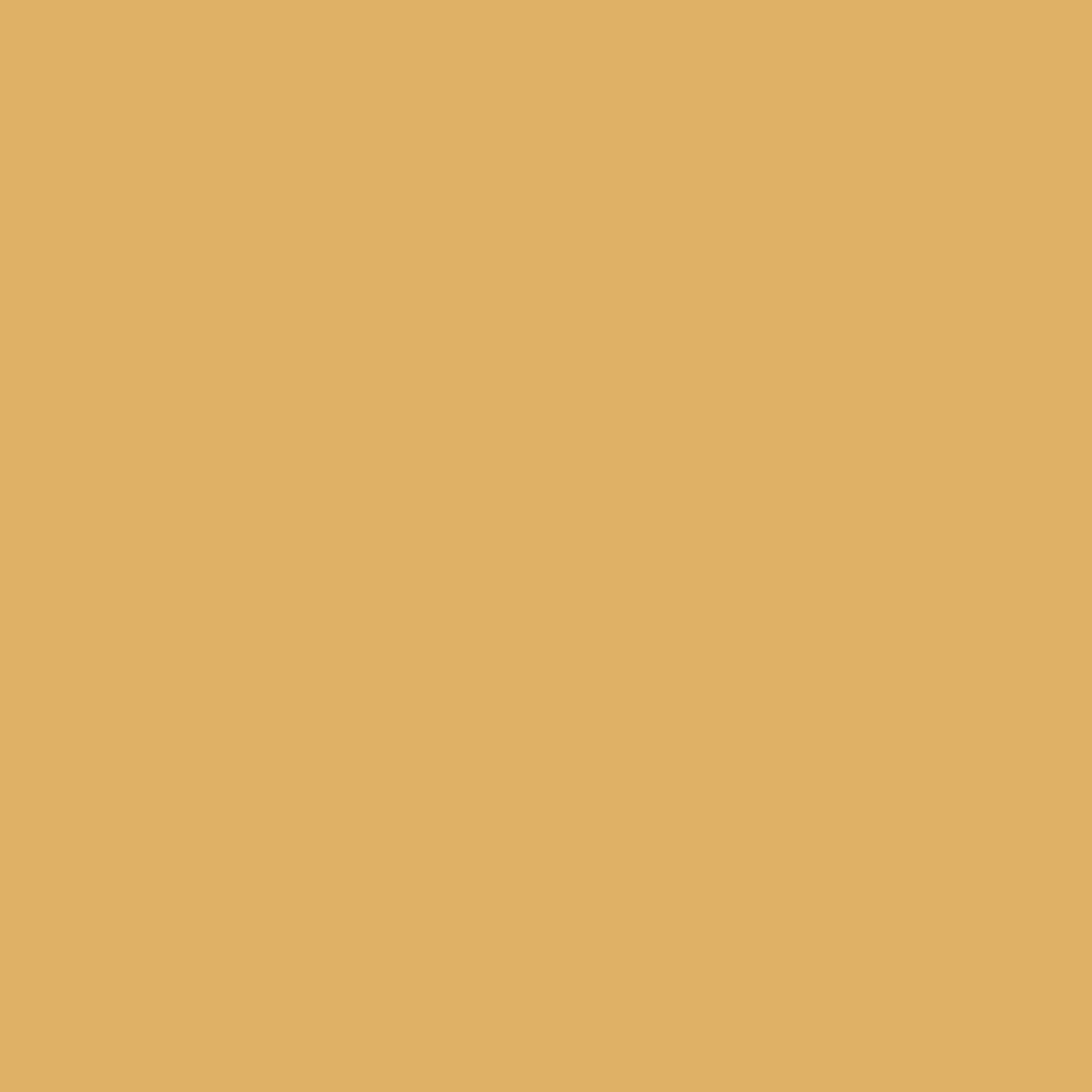 Sienna - Natural Wall Paint Colour - The Organic and Natural Paint Company